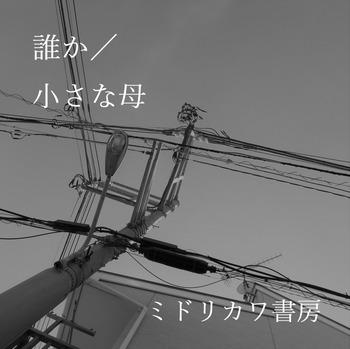 s_誰か/小さな母 ジャケ写.JPG